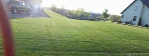 lawn1600x600